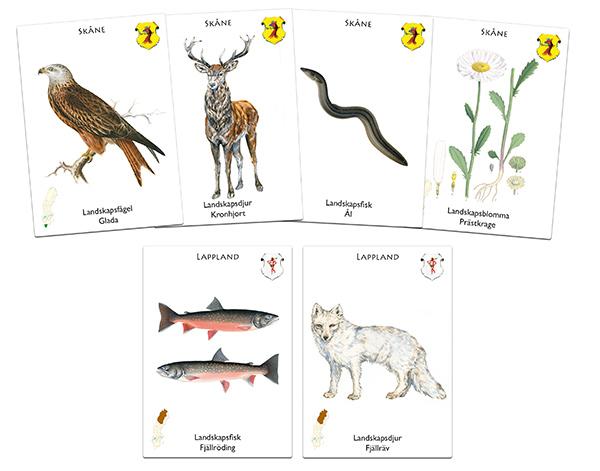 landskapsspelet korten